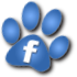 Become a fan of Scratch9 on Facebook