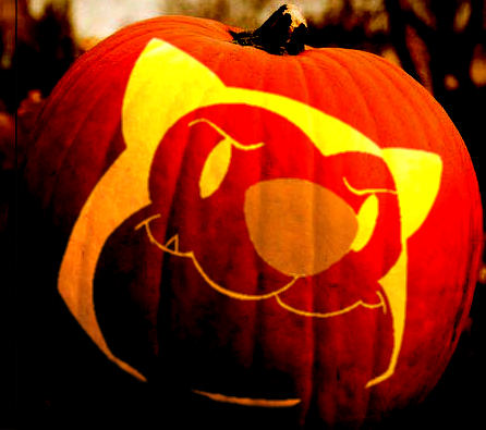 Scratch-O-Lantern Simulation
